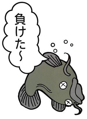 Catfish1_2
